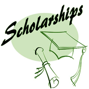 10 Scholarship Essay Examples & Samples PDF